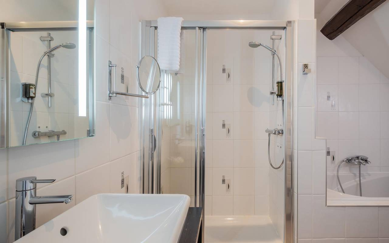 Shower of the bathroom hotel tours
