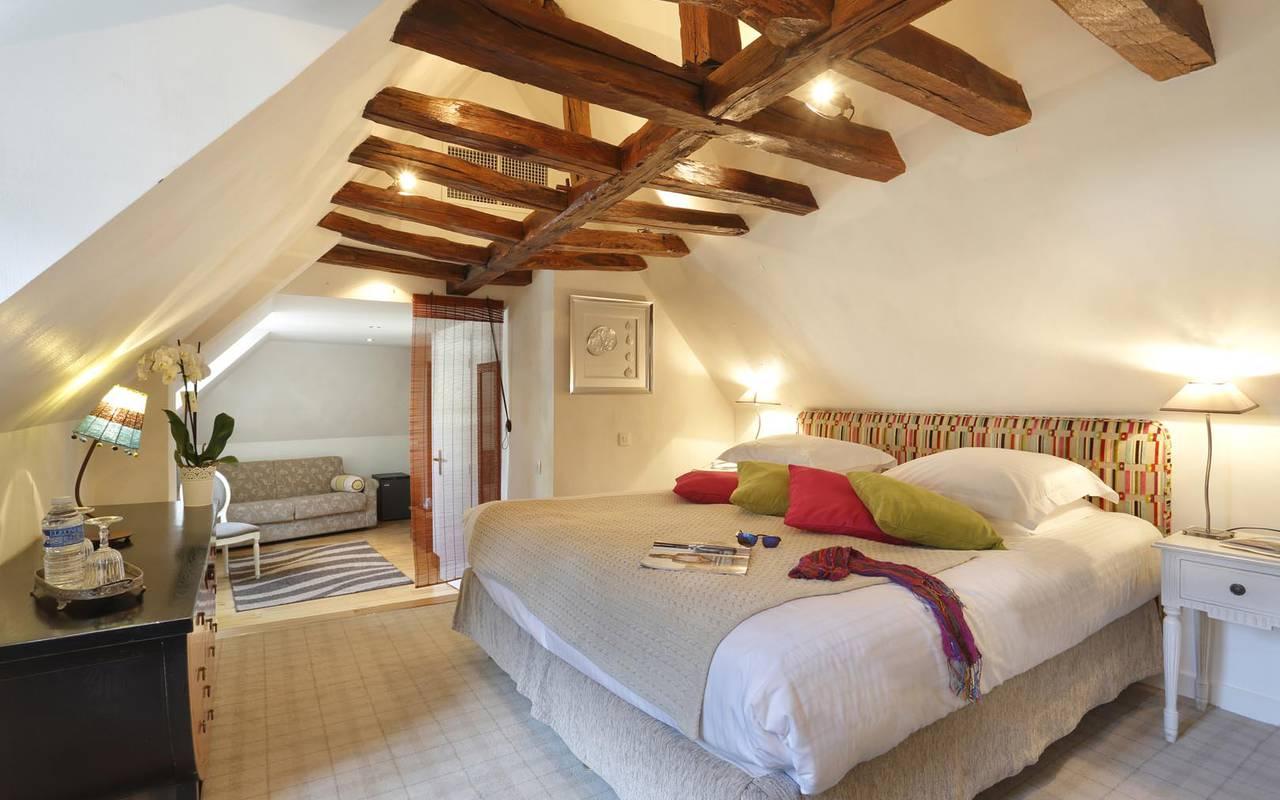 Prestigious big suite hotel loire