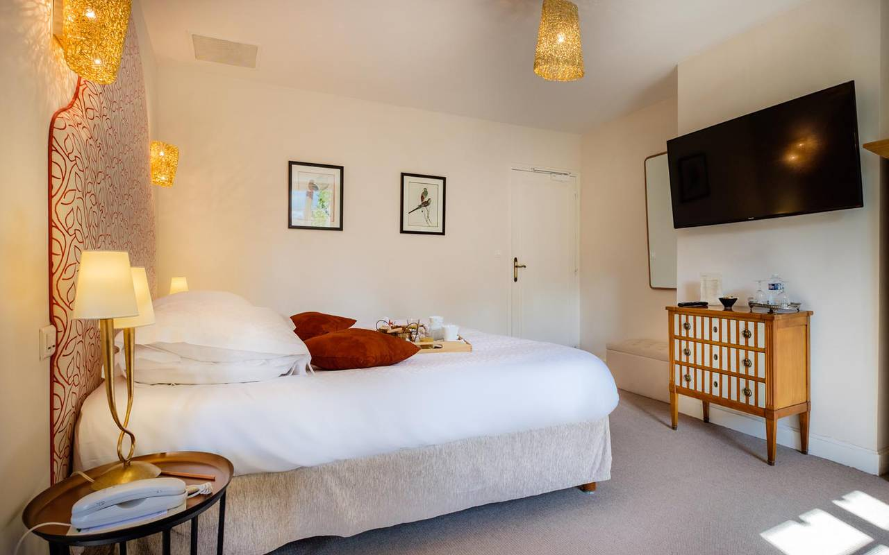Bright double room hotel touraine
