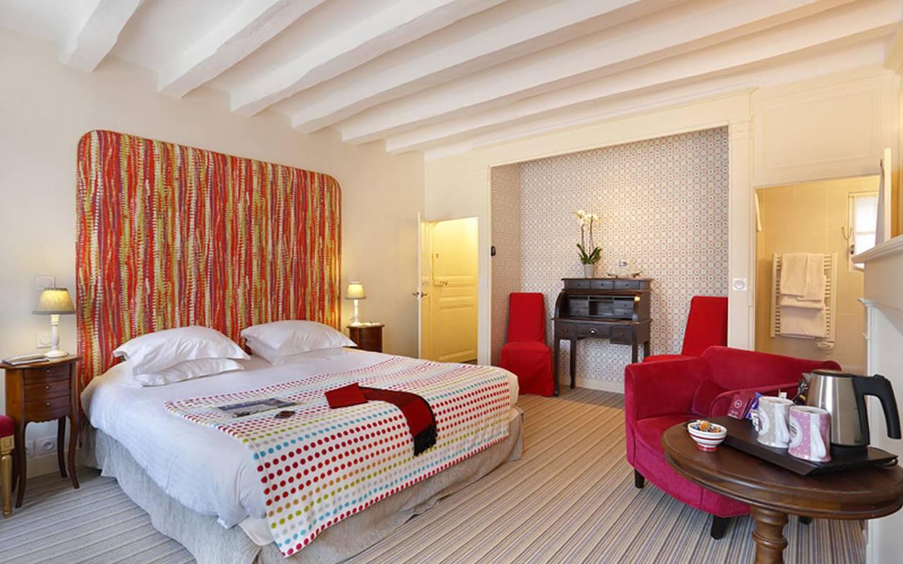 Chambre double confortable sublime hôtel chenonceaux