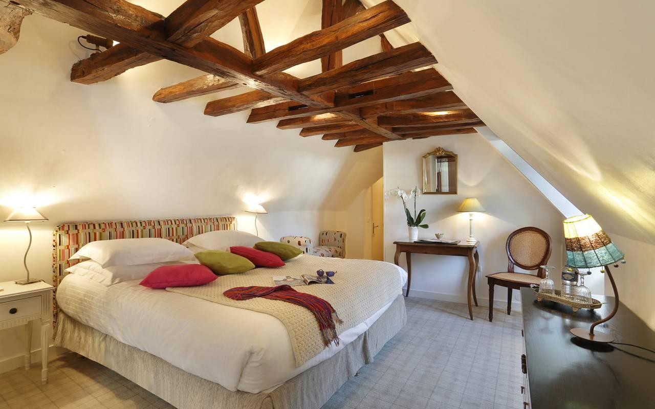 Jolie et grande chambre hôtel loire