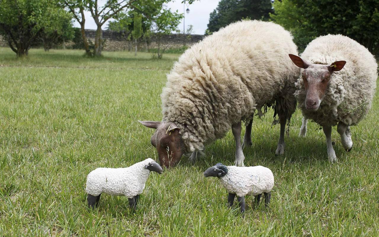 Moutons dans le champ hotel de luxe loire